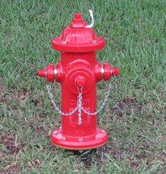 hydrant85street2a (24K)